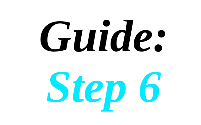 Guide: Step 6
