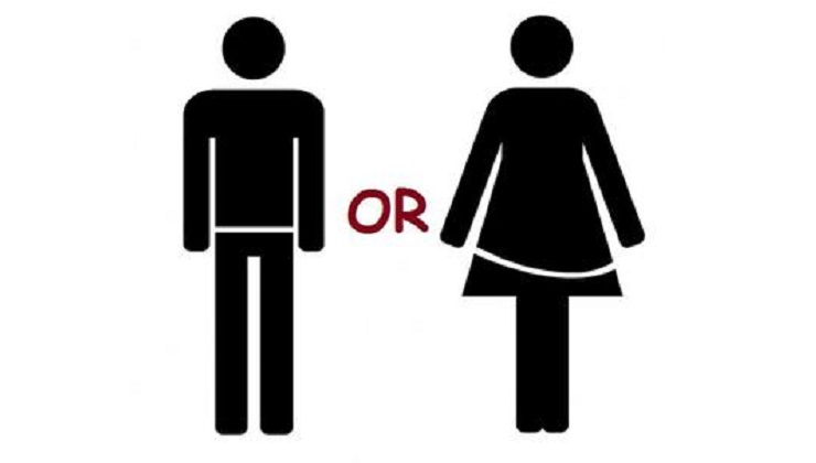 Are You Male or Female This Lifetime?